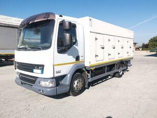 chladírenský nákladní vozidlo DAF 45.220 SURGELATI ATP 10/2024 - 120QLI
