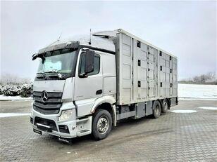 nákladní vozidlo na přepravu zvířat MERCEDES-BENZ Actros 2543 6x2