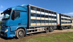 nákladní vozidlo na přepravu zvířat MERCEDES-BENZ Actros 2548 for pigs transport + přívěs na přepravu zvířat
