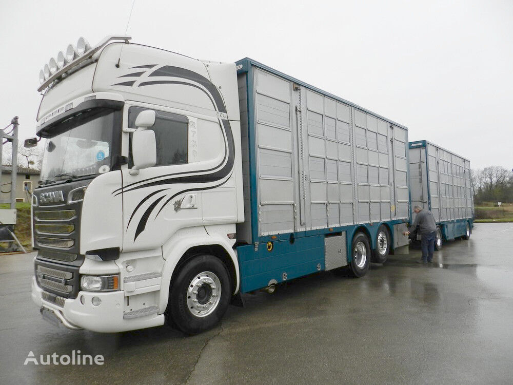 nákladní vozidlo na přepravu zvířat SCANIA R 730 V8 For cattle transport + přívěs na přepravu zvířat